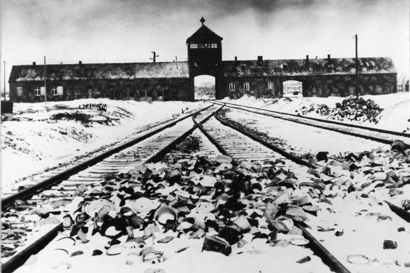 10009128-auschwitz-le-27-janvier-1945-la-liberation-du-camp-en-images